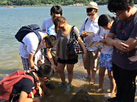 Centennial College Students Look at the Marine Life in the Water