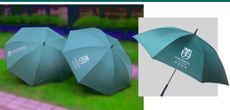 "College Premium - 27"" Straight Umbrella"